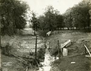 Drainage (harris gully bridge) Feb101913