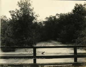 April1912Flood(harrisgully)