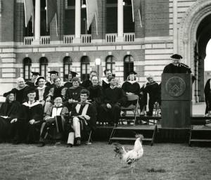 Matriculation with chicken