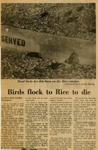 Dead Birds nd in  scrapbook