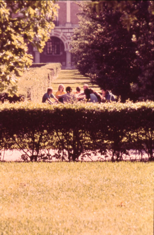 Quad with high shrubs nd 70s slide collection right side