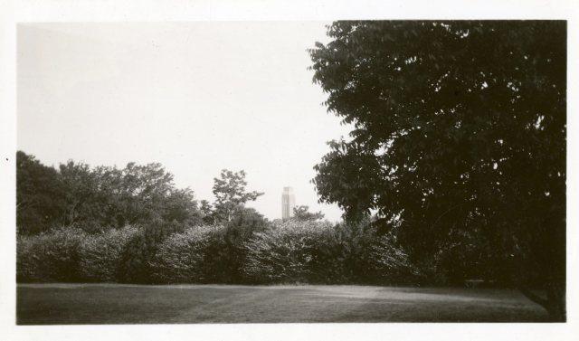 New campanile over gravel walk Neil Brennan 1941062