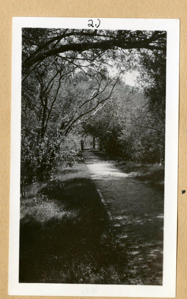 New south gravel walk Neil Brennan 1941052