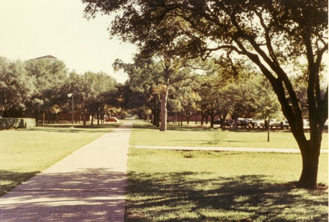 Cohen House Papers Campus Views January 1966  8 069